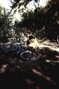 1993 лето